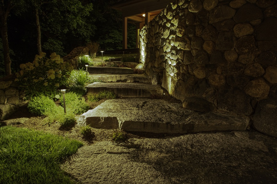 Bring Your Backyard to Life with Landscape Lighting